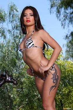 Jynx Maze Fiery Latina Bares Buff Bod in Zebra Print Bikini