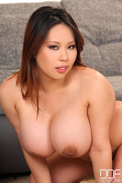Tigerr Benson Big and Busty Asian Curves in Black Lace