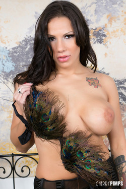 Lylith Lavey Busty Brunette Strips Feathery Lingerie