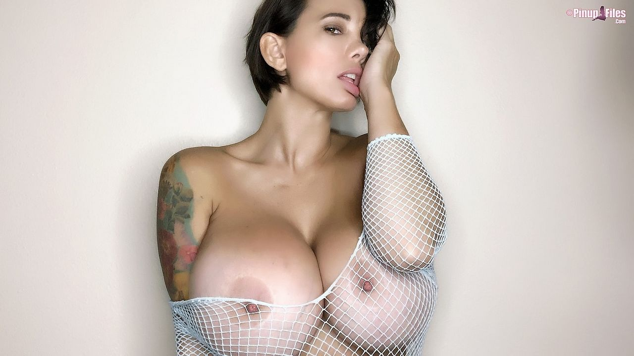 Brittany Elizabeth Busty Pinup in Fishnets